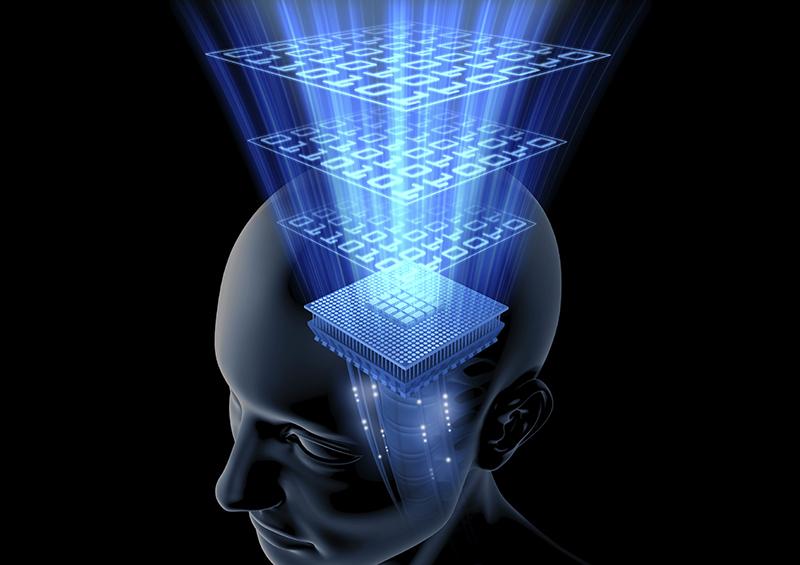 وهم, فکر, علم, عقل, خیال, حواس پنجگانه, حواس باطنی, حکمت, حس مشترک, اصول فقه