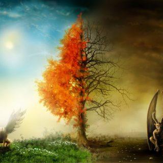 ولد الزنا وَ مِنْ دُونِهِما جَنَّتان مومنین جن شرک شیطان حکم غیر مکلفین حظیره حظایر بهشت حظایر جهنم دنیا جهنم بهشت دنیا آب گرم طبیعی از جهنم است