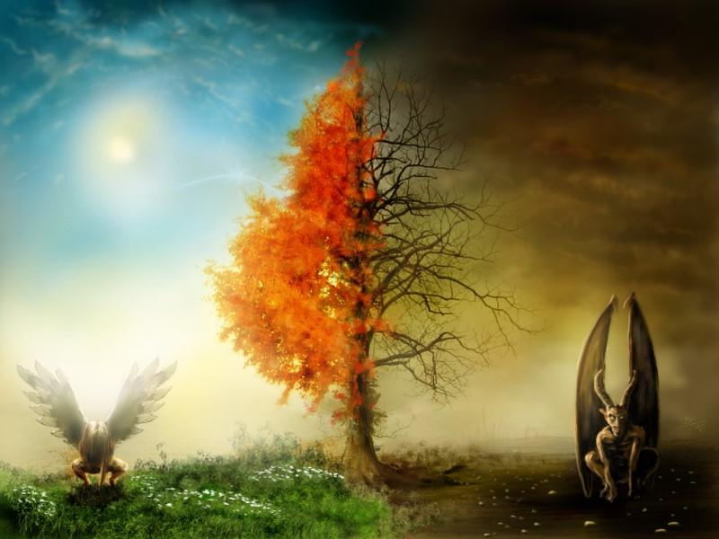 ولد الزنا, وَ مِنْ دُونِهِما جَنَّتان, مومنین جن, شرک شیطان, حکم غیر مکلفین, حظیره, حظایر بهشت, حظایر, جهنم دنیا, جهنم, بهشت دنیا, آب گرم طبیعی از جهنم است