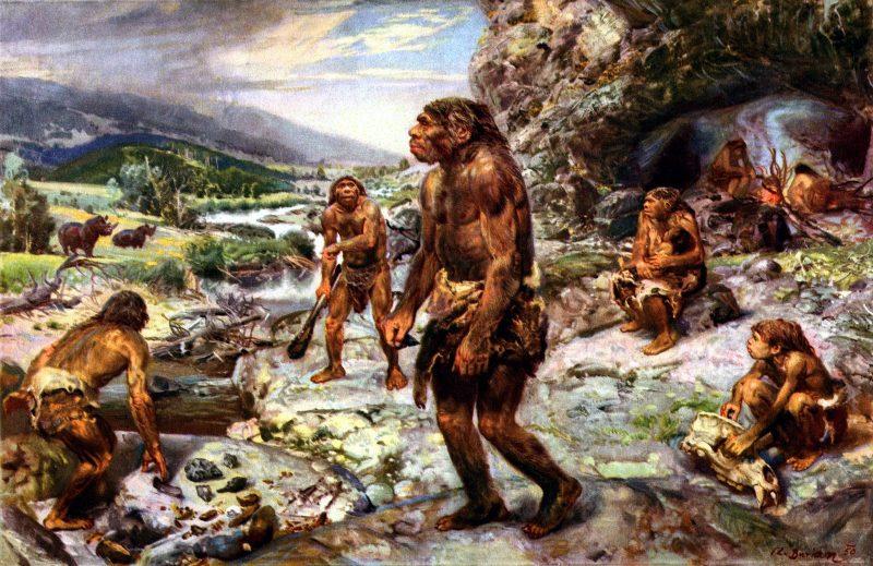 هورقلیا نسناس نئاندرتال قبل از آدم زمین خلقت آدم جن جان انسان های اولیه