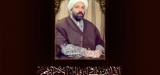 عبدالرضا خان ابراهیمی, شیخیه, سرکار آقا, رهبران شیخیه, رهبر شیخیه کرمان, حاج عبد الرضا خان ابراهیمی, آقای شهید